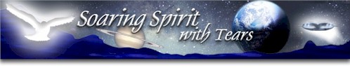 Soaring Spirit with Tears